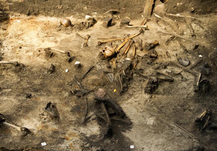 Археологические раскопки массового захоронения в Дании.   Фото: alkenenge.dk.